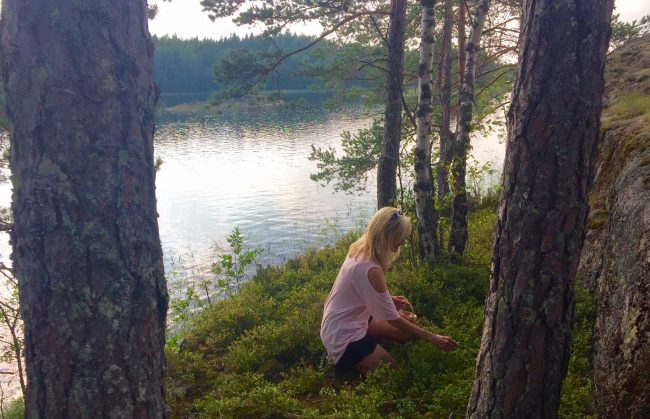 The author hunting for blueberries on one of the 14,000 islands in Lake Saimaa, Finland. Photo courtesy Janna Graber