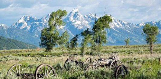 5 Questions: Jackson Hole, Wyoming