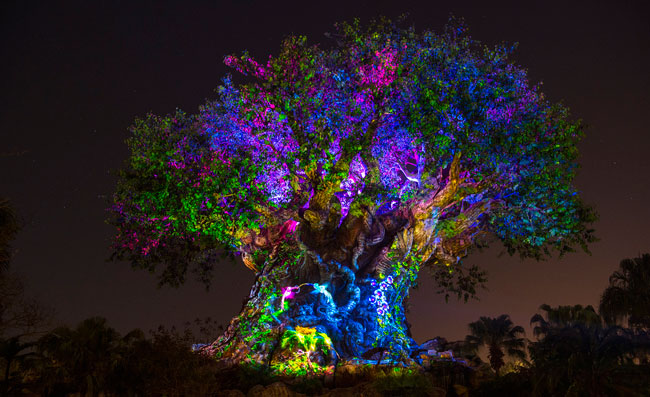 "Disney's Animal Kingdom's iconic Tree of Life will undergo extraordinary ""awakenings"" throughout each evening. Photo by David Roark"
