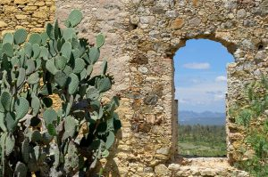 Back to the Future in Mineral de Pozos, Mexico