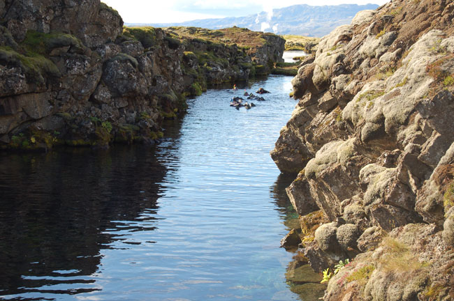 Iceland Golden Circle: Snorkelers dive between the tectonic plates at Pingvellir. Photo by Kayla Lewkowicz
