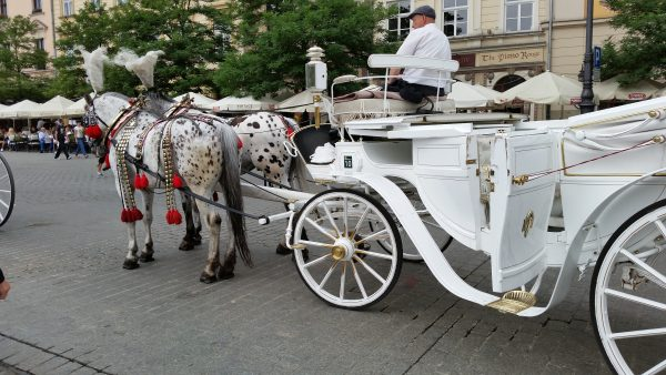 A horse drawn carriage. Photo by Veronica Leigh