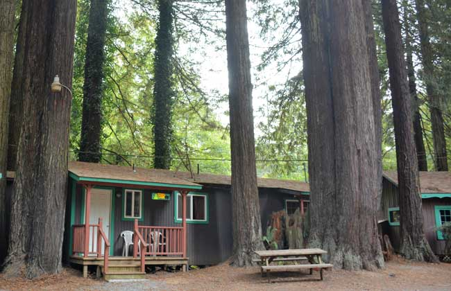 Emerald Forest Cabins and RV, Trinidad, California. Photo by Jim Pond