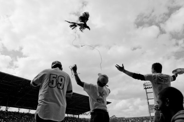 Baseball in Cuba - Whenever their team would score a run, the fans would throw chickens in the air to celebrate. Photo by Rob Born