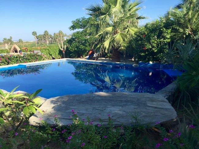 Pool at Baja Beach Oasis, photo by Claudia Carbone