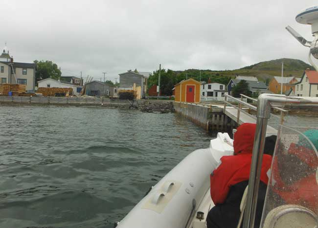 Heading out to go whale watching in Trinity, Newfoundland. Photo by Pamela Hunt