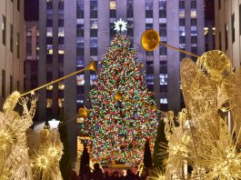 The Rockefeller Center Christmas Tree. Photo by Flickr/gigi_nyc