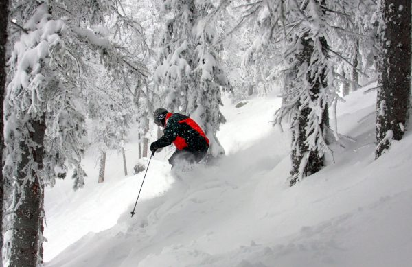 Ski Santa Fe. Powder in the glades. Photo by Dino Vournas Ski Santa Fe