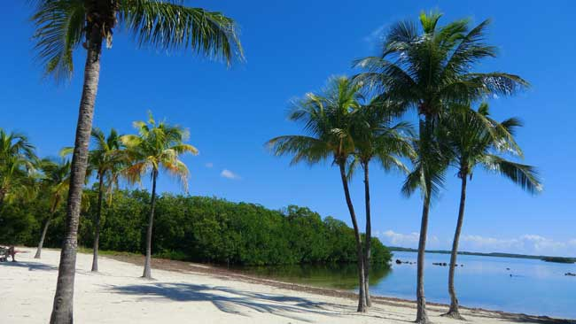 The Florida Keys are home to John Pennecamp State Park.