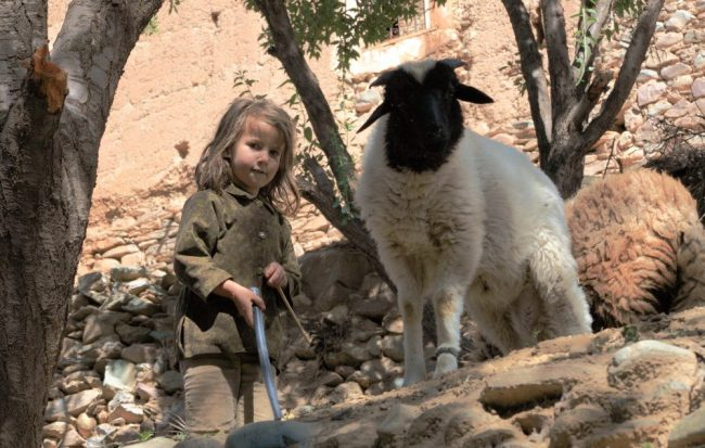 A girl tending sheep in Morocco. Flickr/ Evan Chu