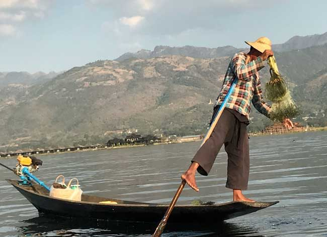 Myanmar travel - A fisherman on Inle Lake in Myanmar. Photo by Sherrill Bodine