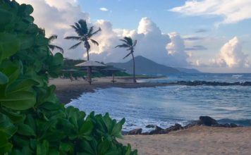 Nevis Travel - Relaxing on the beach on the island of Nevis. Photo by Janna Graber
