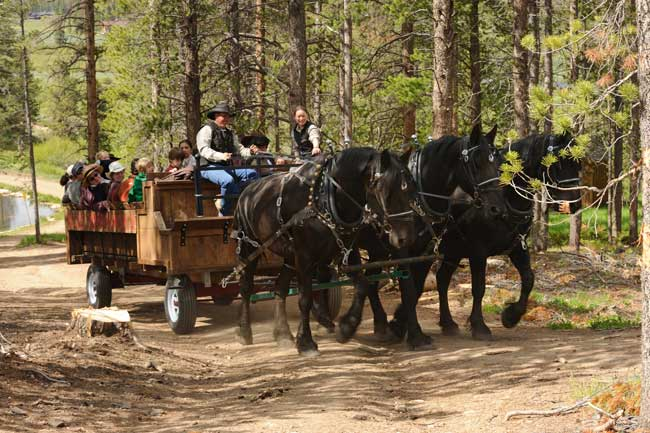Best Year-Round Colorado Dude Ranches. Wagon ride at Devil's Thumb Ranch in Colorado. Photo courtesy Devil's Thumb Ranch