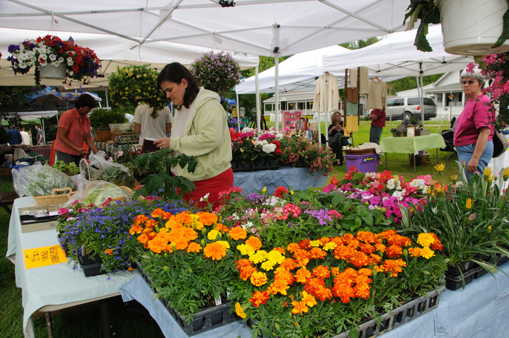 Flowers and fresh produce at the Hinesburg Farmers' Market in Vermont. Photo by Vermont Tourism