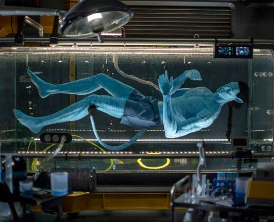 In Flight of Passage, guests connect with an avator and soar on a banshee over Pandora. Before the ride, guests peek inside a lab were an avatar is still in the growth state. Photo by Kent Phillips