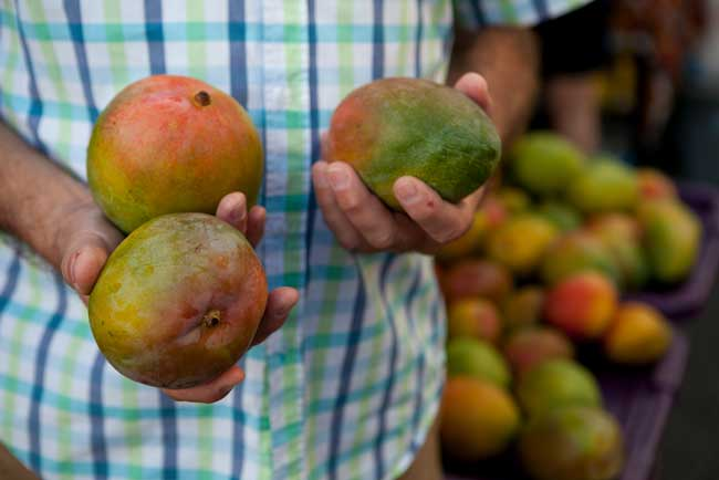 Shopping for mango at a local farmer's market in Oahu. Photo by Hawaii Tourism Authority