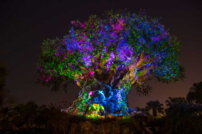 "At night, the Tree of Life ""awakens"" to display colorful stories of animals and nature. Photo by David Roark"