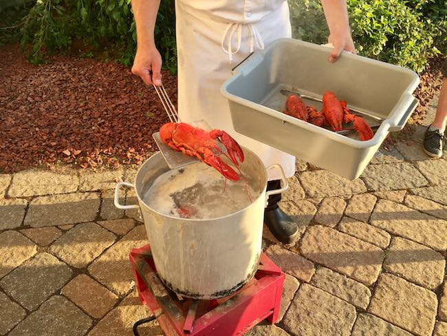 Atlantic lobsters fresh out of the pot. Photo by Claudia Carbone