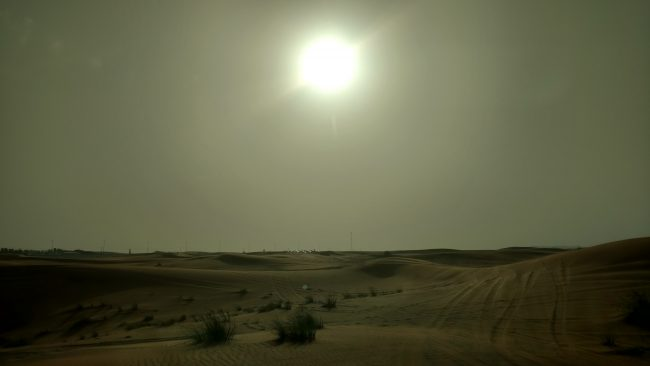 Dubai. In the desert. Photo by Eric D. Goodman