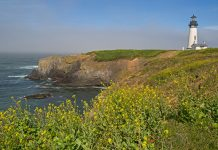 The Yaquina Head Lighthouse. Photo by Flickr/Ralph ArvesenThe Yaquina Head Lighthouse. Photo by Flickr/Ralph Arvesen