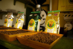 Costa Rica in a Cup: The Doka Coffee Estate