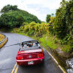 Maui Travel - What to see and do on Maui