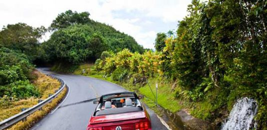 Hawaiian Road Trip: Exploring Maui by Car