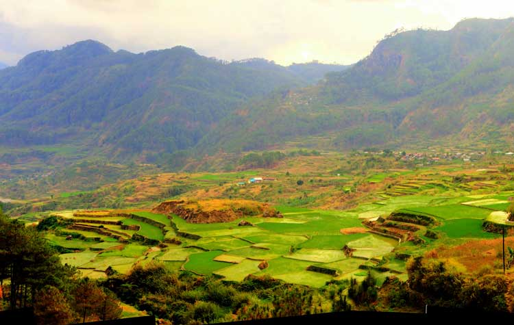 Rice terraces in Sagada, a mountain town in the Philippines. Flickr/Doods