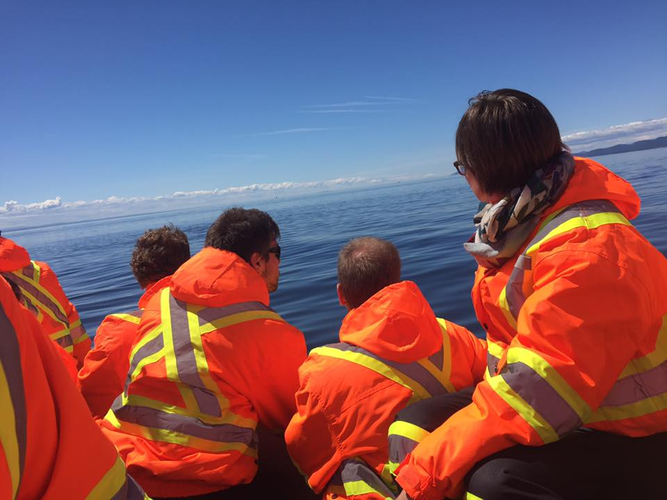 We saw pods of beluga whales and dozens of minke. Photo by Janna Graber
