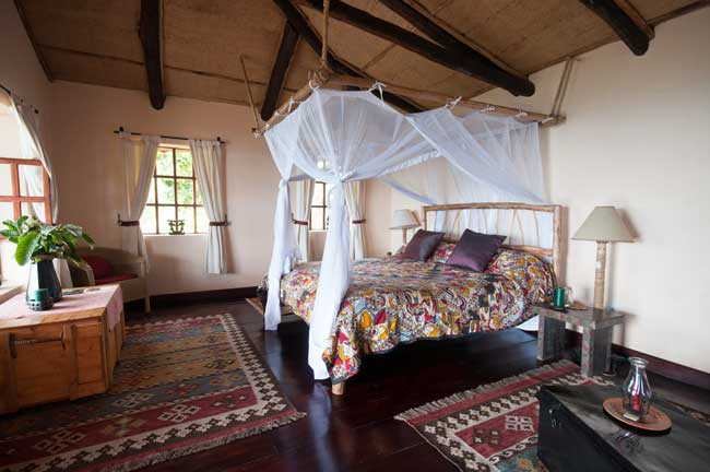 Double Banda room at Virunga Lodge. Photo by Volcanoes Safaris