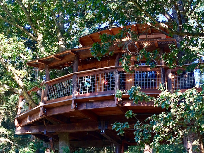 Porch of the treehouse. Photo by Claudia Carbone