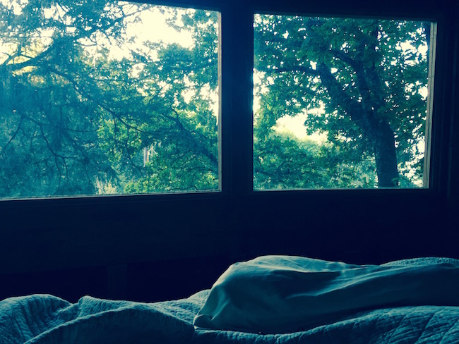 Waking up in a treehouse. Photo by Claudia Carbone