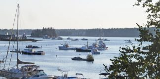 Harbor scene in Boothbay Harbor, Maine. Photo by Michael Schuman