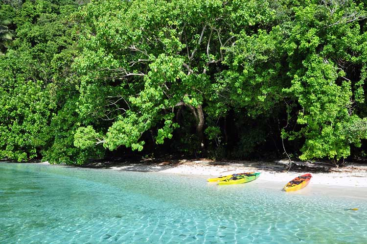 Kayaking the Rock Islands of Palau