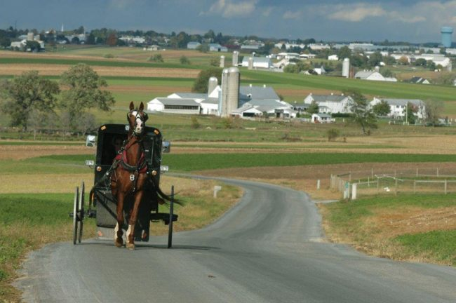An Amish buggy ride in Intercourse. Photo by Brian Evans