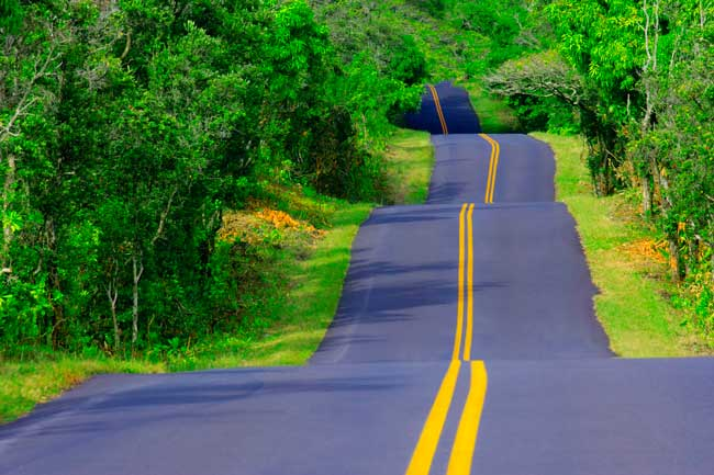 Where Will the Road Lead You This Year? Life as a Travel Writer