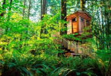 One of the options at TreeHouse Point. Photo by TreeHouse Point
