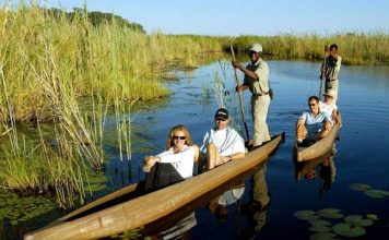 On a mokoro ride on the Okavango Delta in Botswana. Photo by Yvonne Michie Horn
