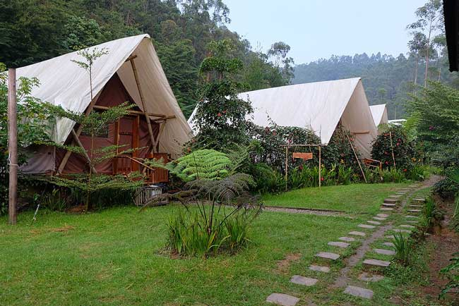 8 Reasons to Go Glamping on Your Next Holiday