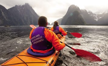 Real Journeys Cruise in Fiordland National Park. Photo by Real Journeys