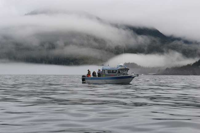 A thick fog covered the water and hills surrounding the bay. Photo by Janna Graber