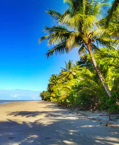 Four Mile Beach in Port Douglas. Photo by Tim Downs