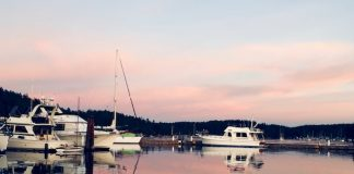 Friday Harbor at dusk. Photo by Claudia Carbone