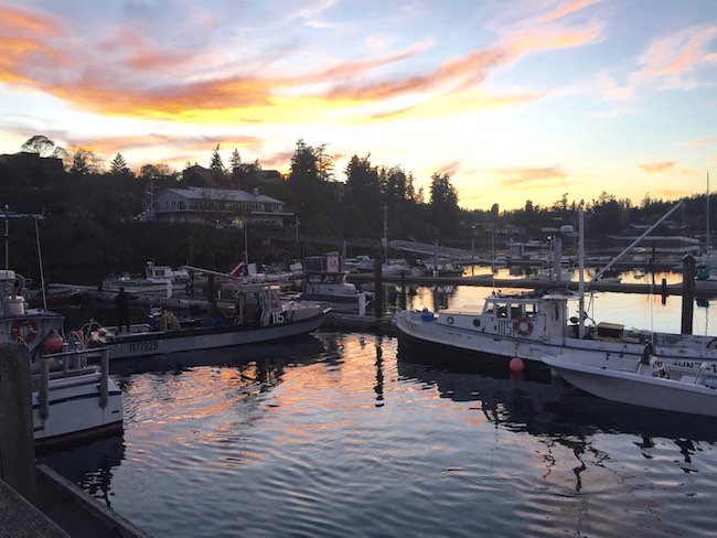 Sunset in Friday Harbor marina. Photo by Claudia Carbone