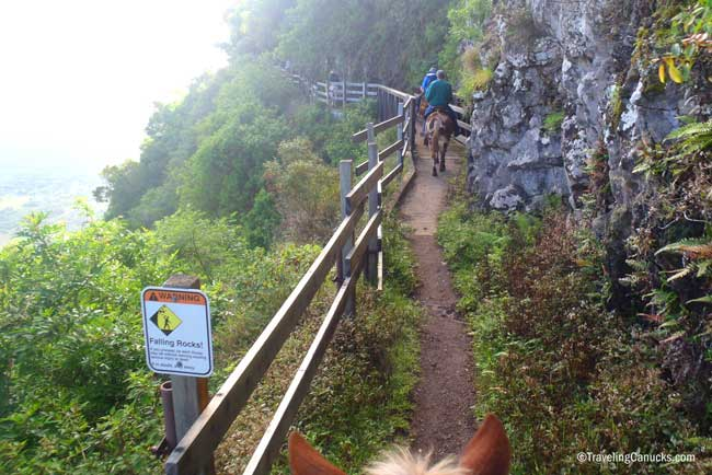 Heading down the trail with Molakai Mule Ride. Flickr/Cameron Wears