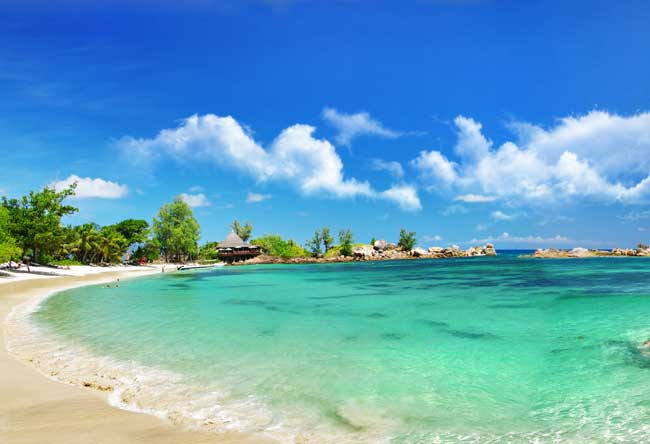 Seychelles Island Paradise What To See And Do In The