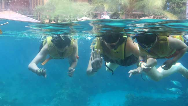 Snorkelers wave to spectators from the window to the Rainbow Reef marine sanctuary at Aulani: A Disney Resort and Spa - Knox Nehdar, Caitlyn Kelly and Kaleb Nehdar