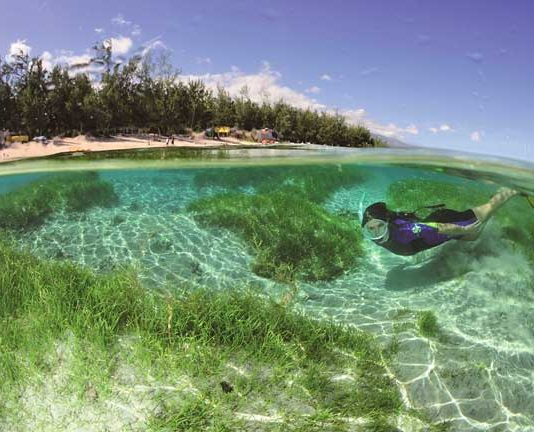 Snorkeling on Reunion Island. Photo by Lauren Beche