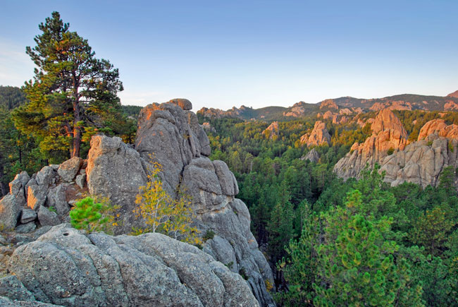 The Black Hills of South Dakota. Photo by Travel South Dakota