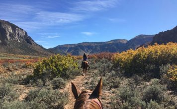 Horseback riding at Palisade Ranch is only one of the many activities offered at Gateway Canyons Adventure Center. Photo: Liana Moore